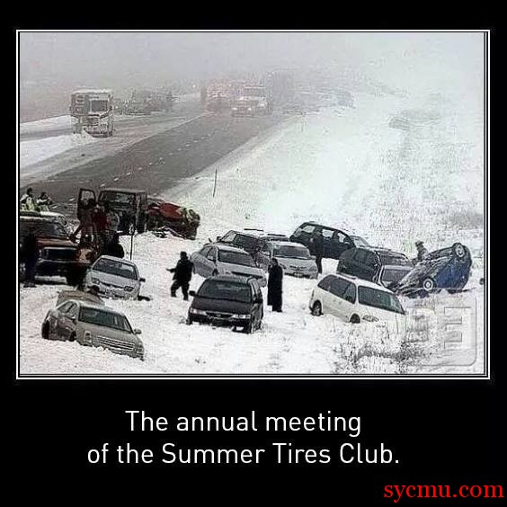Annual Meeting of the Summer Tires Club