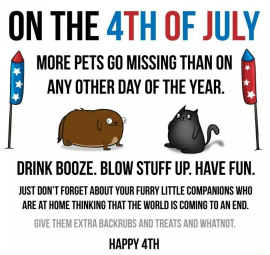 Don't forget your pets on 4th of July