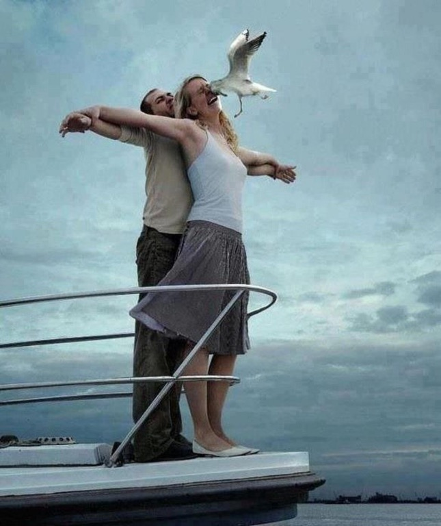 titanic take-off bird flies