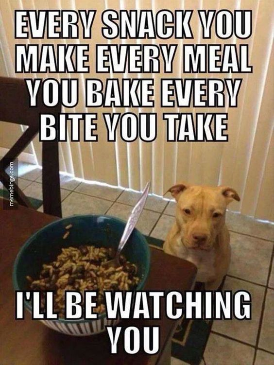 Every meal you take I'll be Watching you