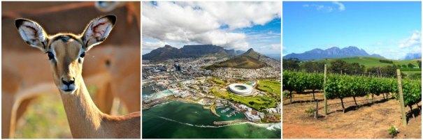 Paketresor till Sydafrika- Safari, Kapstaden och vindistrikten