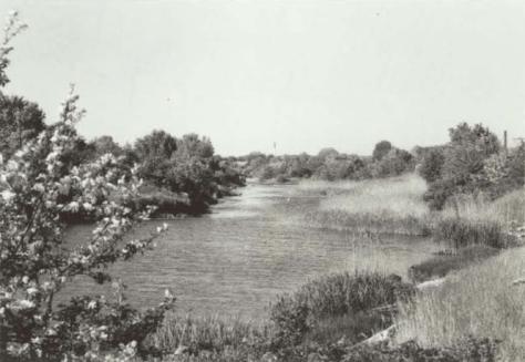Enghave Kanal