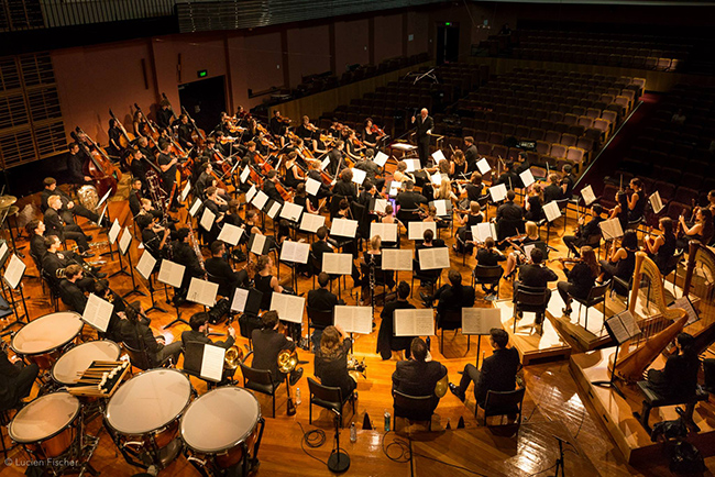 Musician Project Orchestra under the direction of Fabian Russell