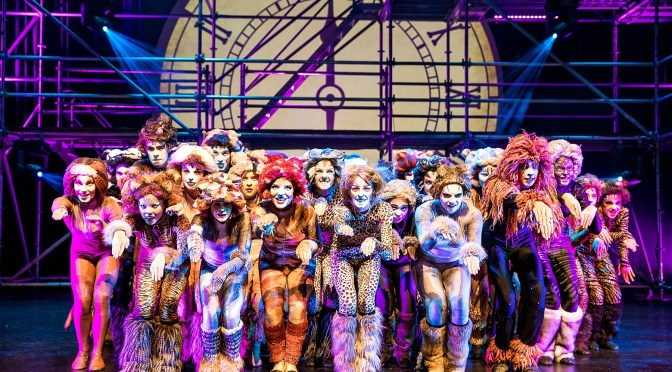 PACKEMIN PRESENTS CATS @ THE CONCOURSE, CHATSWOOD