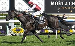 Tickets to Moet & Chandon Spring Champion Stakes