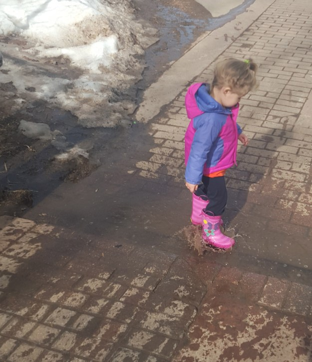 Sydney LOVES her rain boots, especially where there are puddles to play in! (2/11/16)
