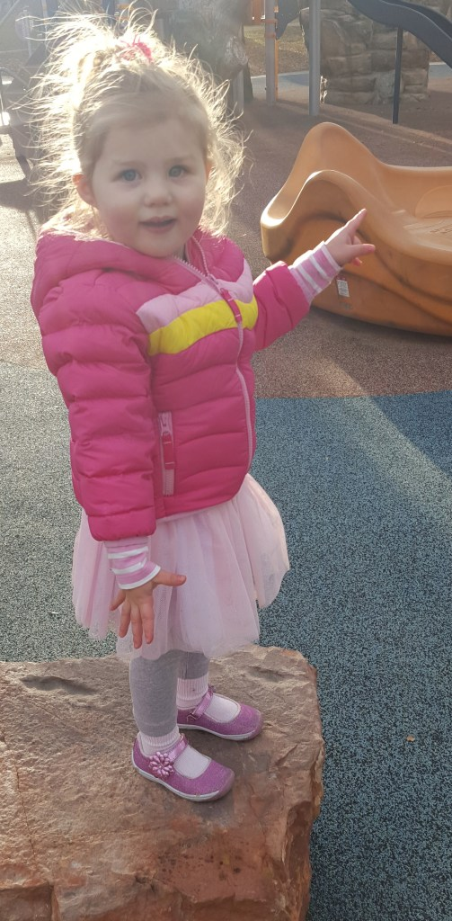 Sydney decided to wear her pink princess costume to the park, where she sang and danced on the playground (12/8/15)