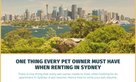 One Thing Every Pet Owner Must Have When Renting in Sydney