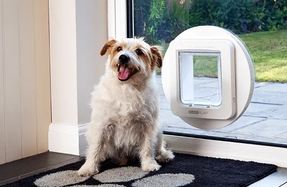 The Best Electronic Dog Doors For 2018 Sydney Wide Pet Doors