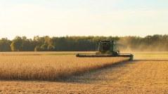 Sped Fiscal Produtor Rural é exigido em Mato Grosso (MT)