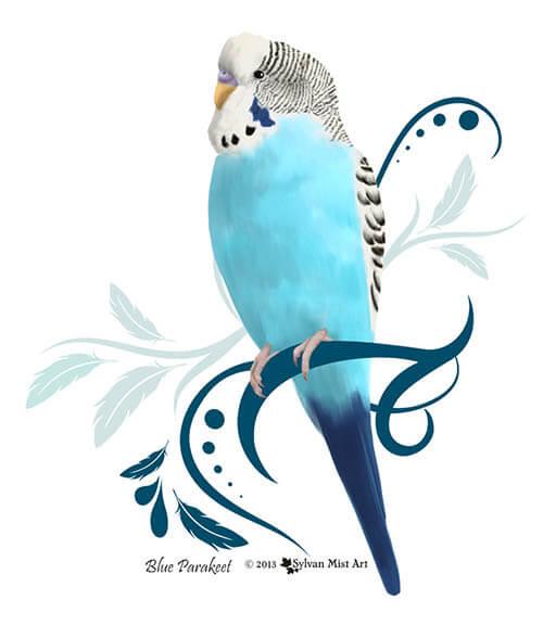 blue parakeet, budgie art design by Sylvan Mist Art.