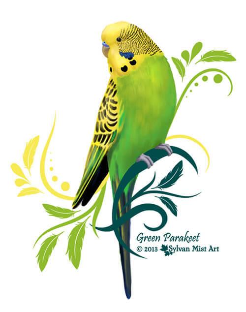 green budgie or parakeet, bird art and design