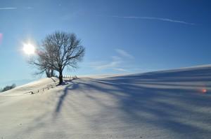 winter-586064_1920