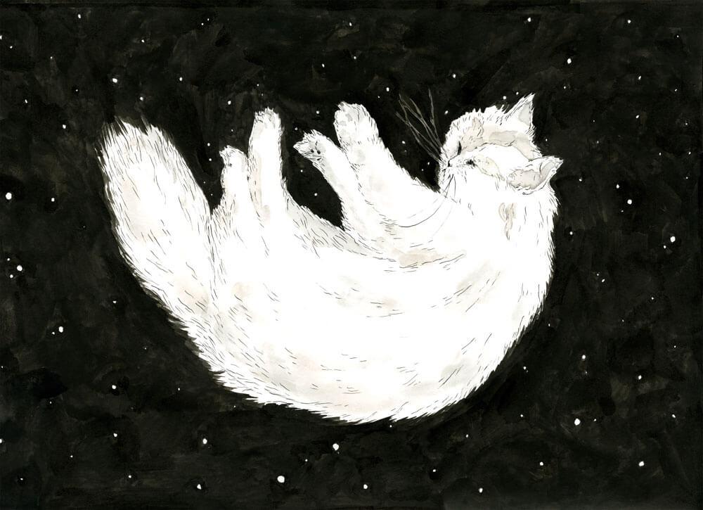 web.cat.sylviastolan