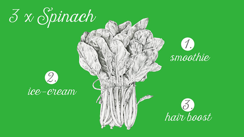 drawing spinach