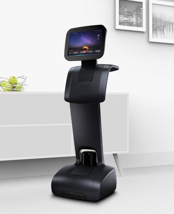 robot temi