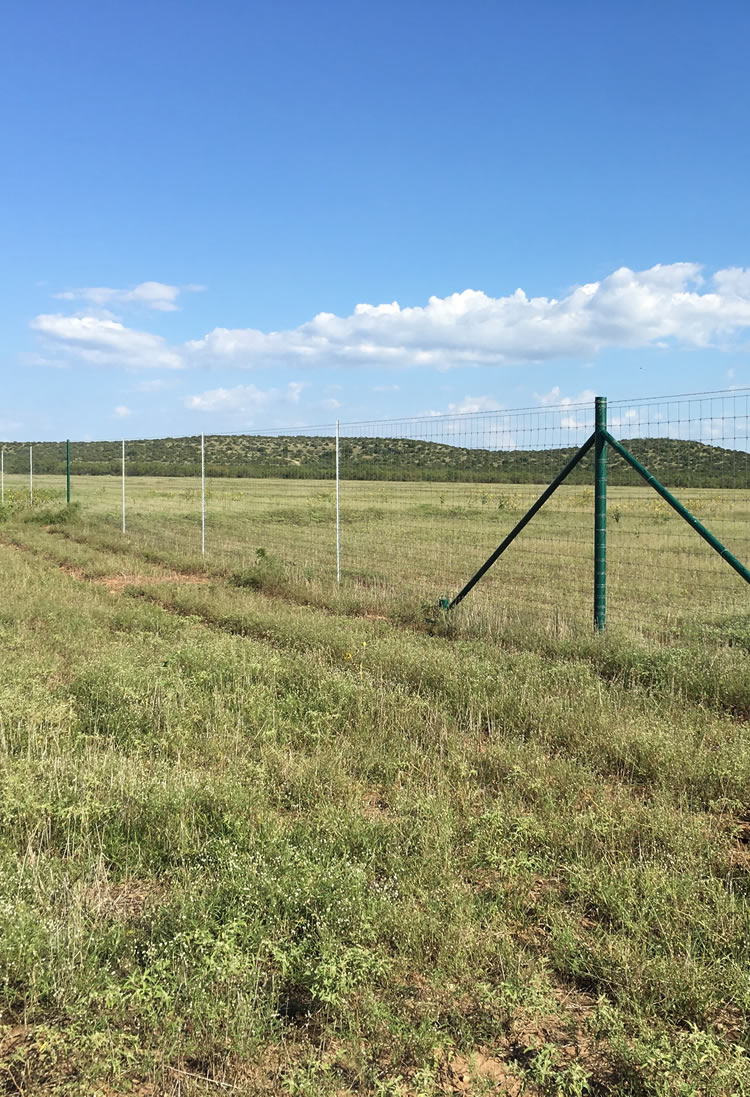 Farm and Ranch Fencing West Texas
