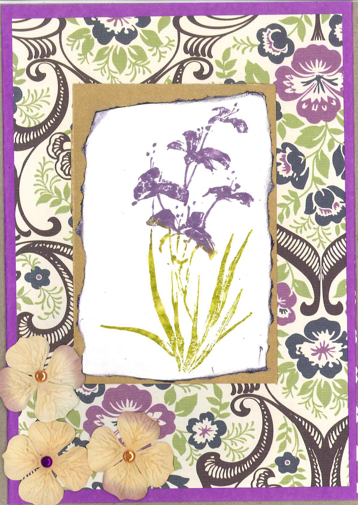 Brushed Irises