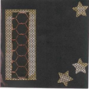 Black dragonfly envelope