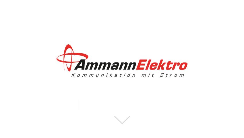 Ammann Elektro AG