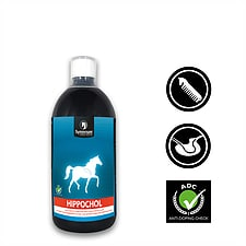 Liver and Kidney Detox for horses