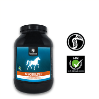 Natural Muscle supplement for horses