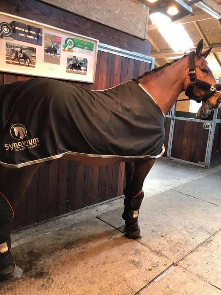 Synovium Horse Health supplements