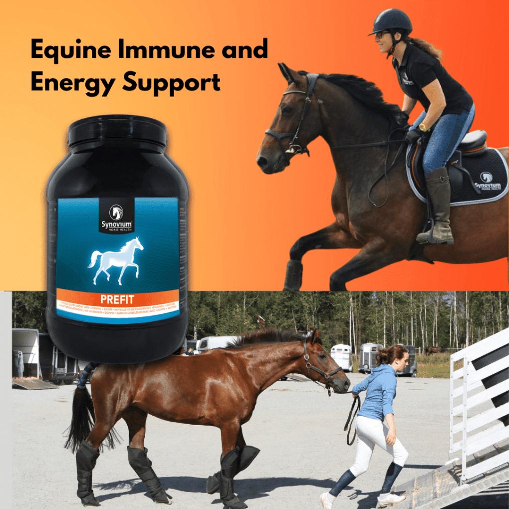 Horse Immune Support