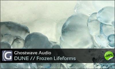 in_dune_frozen