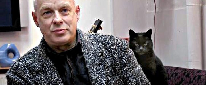 brian-eno-cat-not-impressed