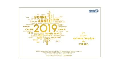 TOUTE L'EQUIPE DU SYPRED VOUS SOUHAITE UNE TRES BONNE ANNEE 2019