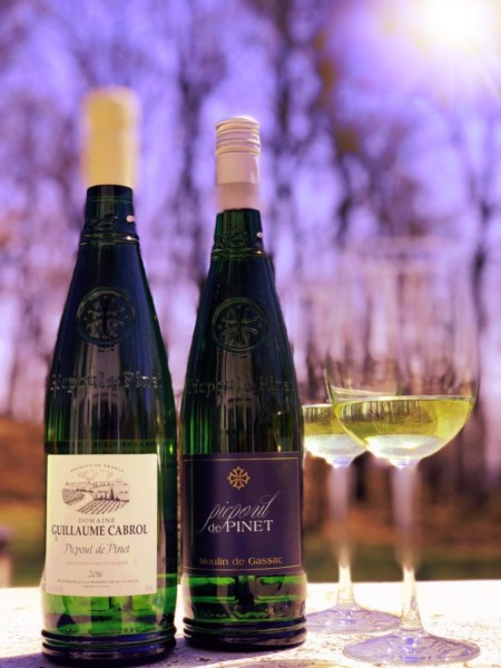 The Rise of Picpoul de Pinet