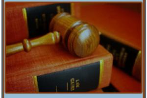 كم راتب المحامي