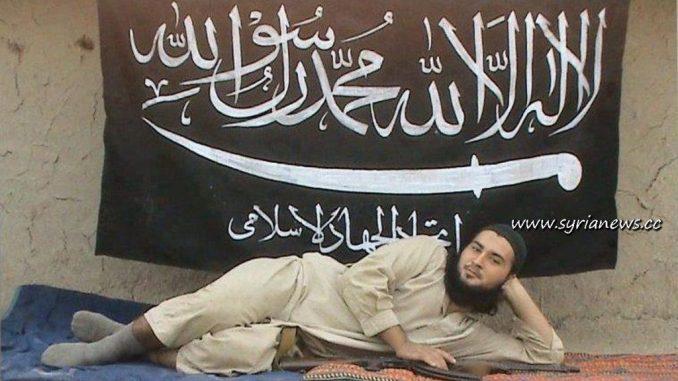 Qaeda fighter
