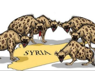 image-Syria attacked by hyenas