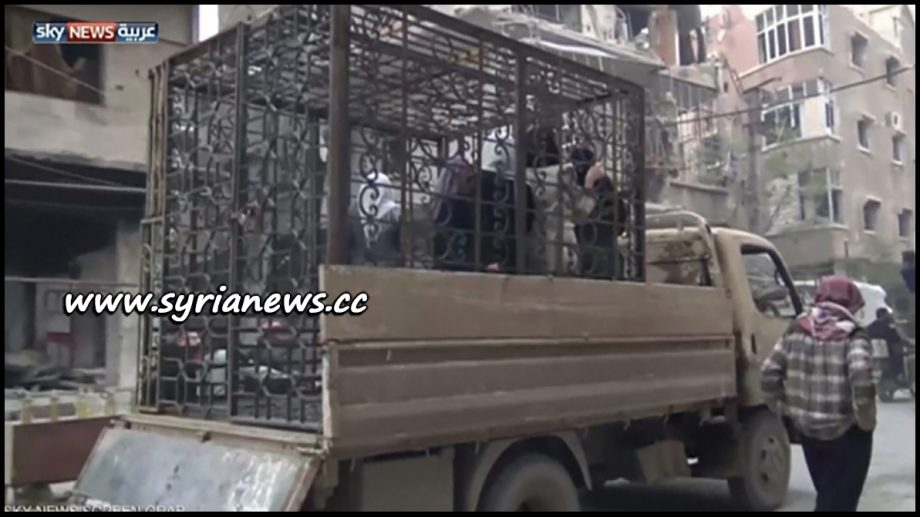 image-Saudi-Sponsored Jaysh al-Islam Lock Women and Children in Cages in Pick-up Vehicles in Douma