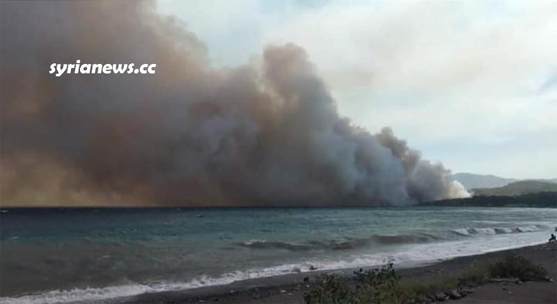 Syrian coastal fires