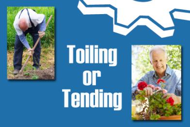 tending versus toiling in your business