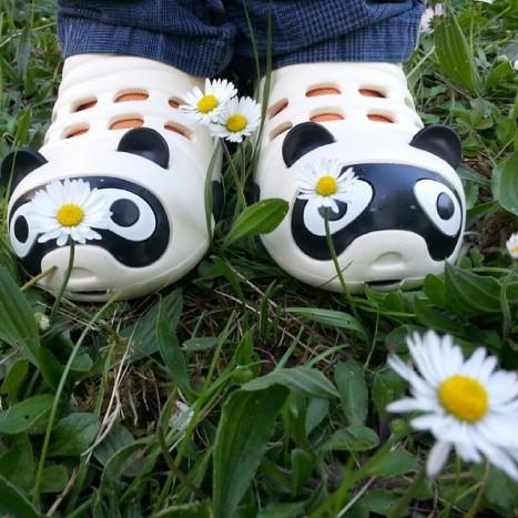panda pâquerettes