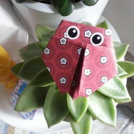 origami coccinelle