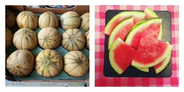 melons pastèque