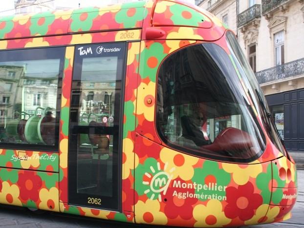 tramway fleuri montpellier sysyinthecity