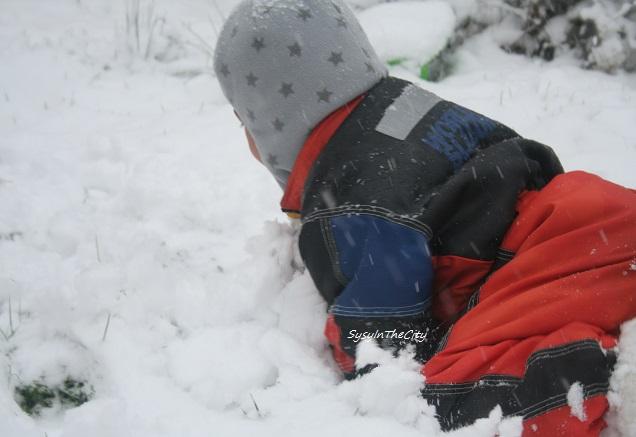 toulouse 030215 sysyinthecity neige
