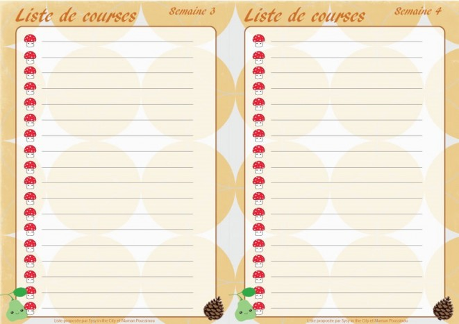 liste-courses-2-visuel