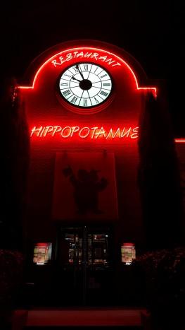 hippopotamus (16)