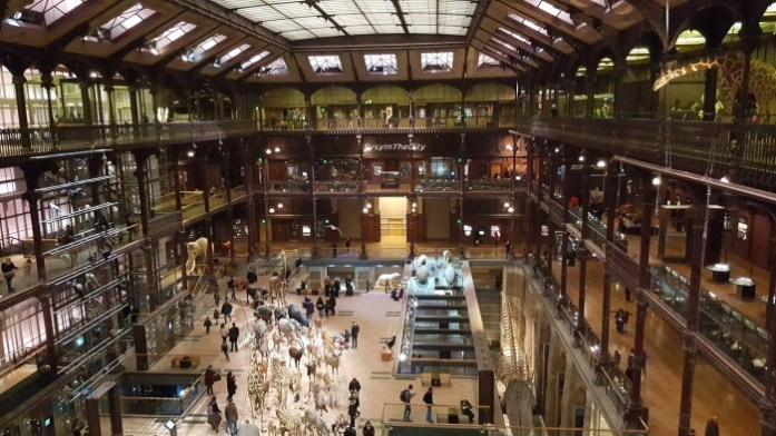 Grande galerie de l'évolution Paris SysyInTheCity (13)