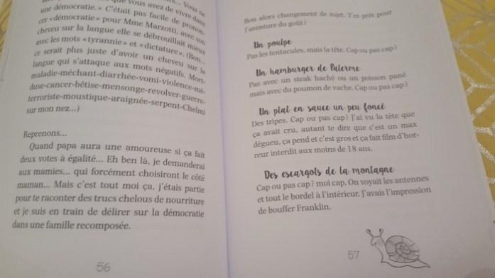 journal de nine le livre