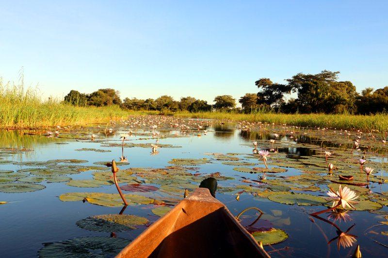 Kayaking Namibia