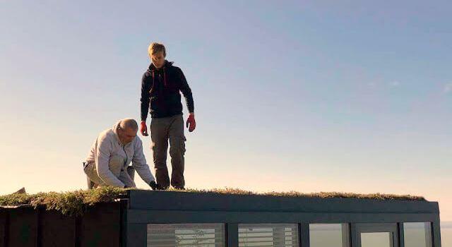 Varjúháj tető