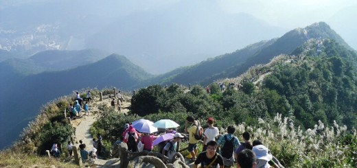 Wutong Mountain Climbing and Travelling